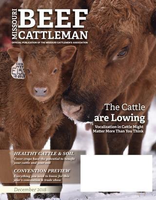 Missouri Beef Cattleman